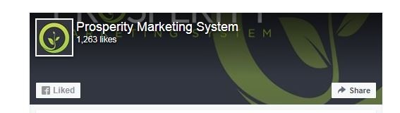 Prosperity Marketing System Review