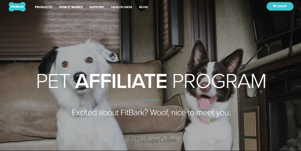 Affiliate Programs For Pet Products - Pic of the Super Collies